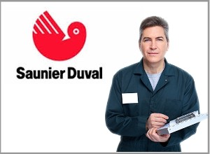 Servicio Técnico Sauinier Duval en Murcia